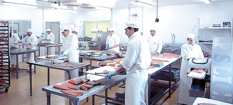 atelier agroalimentaire personnes préparant du poisson